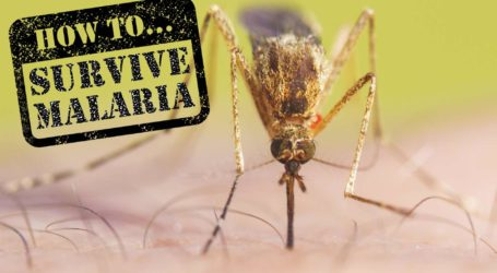 How To Survive Malaria